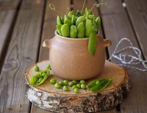 Žalieji žirneliai – sotus užkandis ir pagardas salotoms